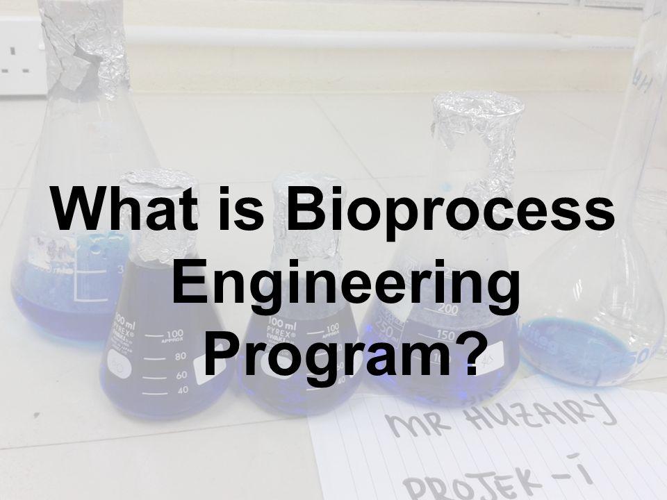 What is Bioprocess Engineering Program?