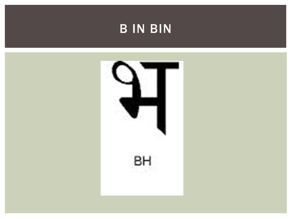 B IN BIN