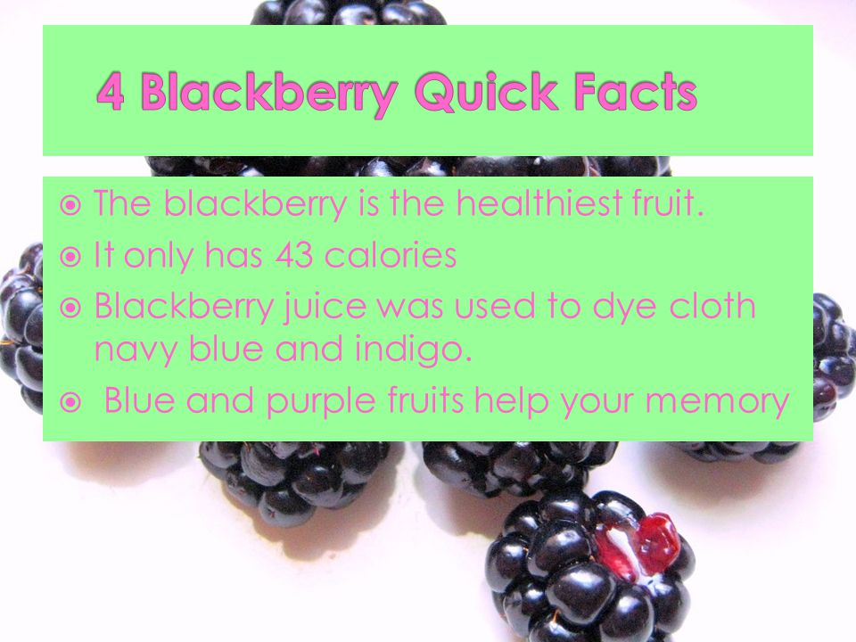  The blackberry is the healthiest fruit.
