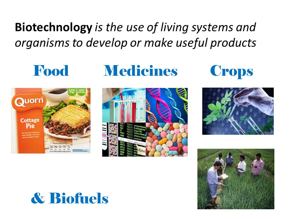 Biotechnology ~ the alteration of natural biomolecules using science and engineering to provide goods and services