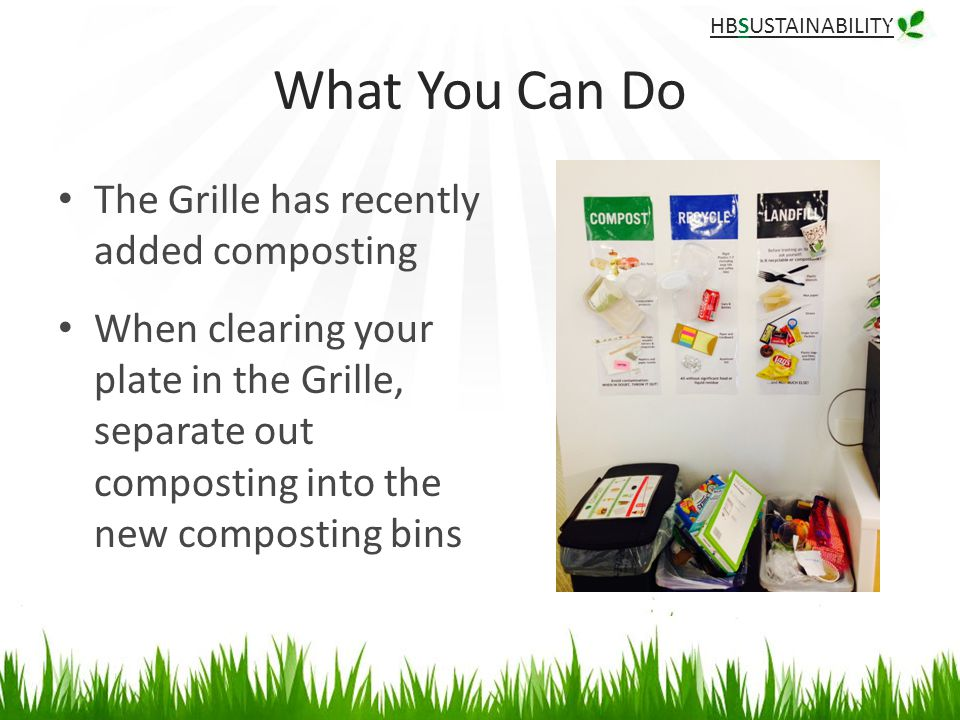 HBSUSTAINABILITY What You Can Do The Grille has recently added composting When clearing your plate in the Grille, separate out composting into the new composting bins