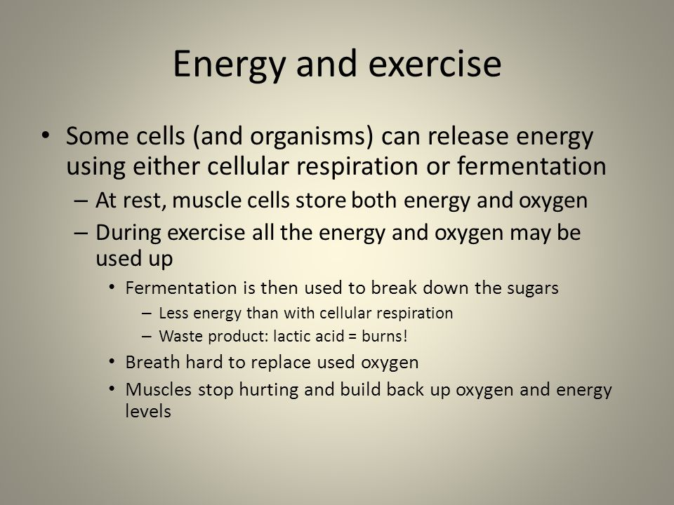 Energy and exercise Some cells (and organisms) can release energy using either cellular respiration or fermentation – At rest, muscle cells store both energy and oxygen – During exercise all the energy and oxygen may be used up Fermentation is then used to break down the sugars – Less energy than with cellular respiration – Waste product: lactic acid = burns.