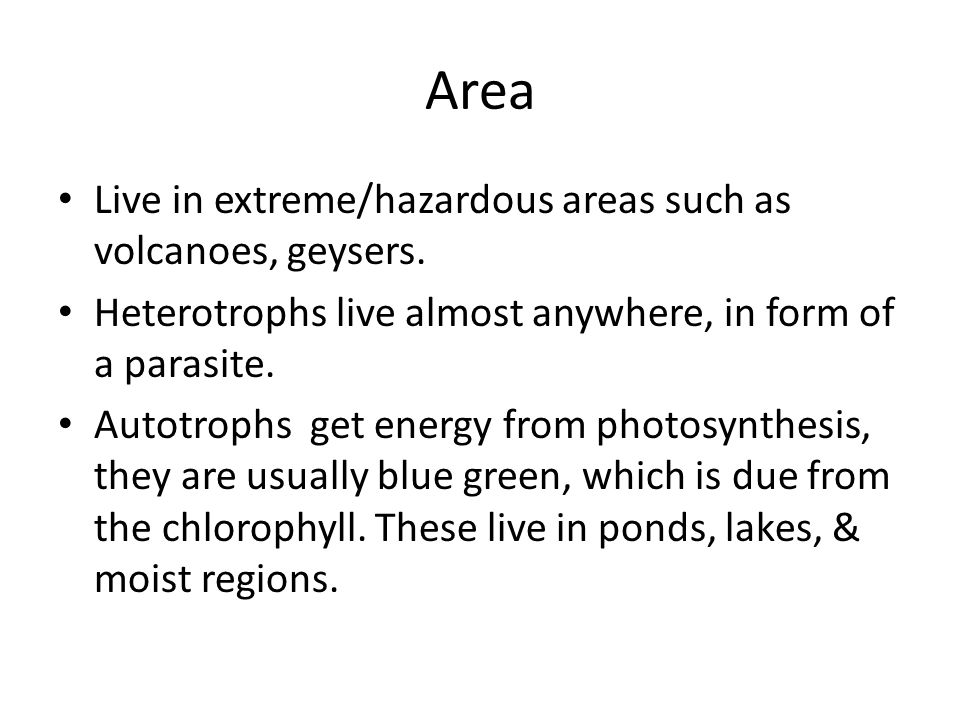 Area Live in extreme/hazardous areas such as volcanoes, geysers.