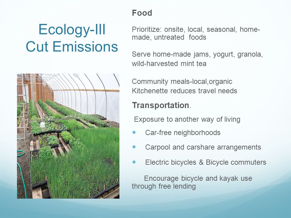 Ecology-III Cut Emissions Food Prioritize: onsite, local, seasonal, home- made, untreated foods Serve home-made jams, yogurt, granola, wild-harvested mint tea Community meals-local,organic Kitchenette reduces travel needs Transportation.