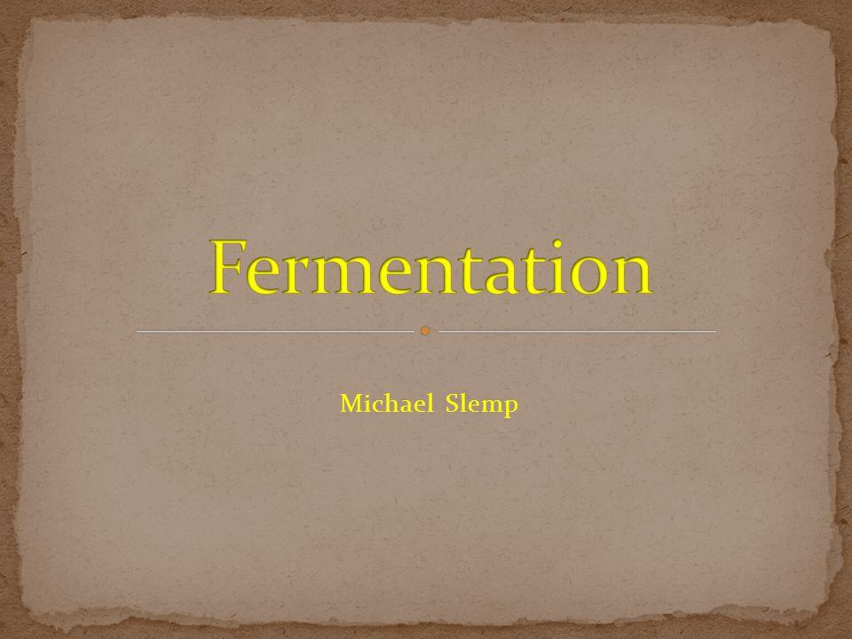 Michael Slemp