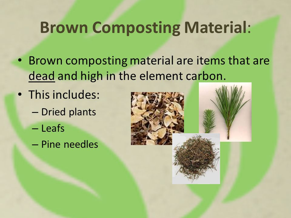 Brown Composting Material: Brown composting material are items that are dead and high in the element carbon. This includes: – Dried plants – Leafs – P