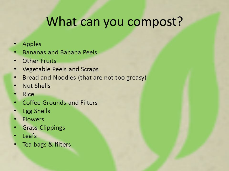 What can you compost? Apples Bananas and Banana Peels Other Fruits Vegetable Peels and Scraps Bread and Noodles (that are not too greasy) Nut Shells R