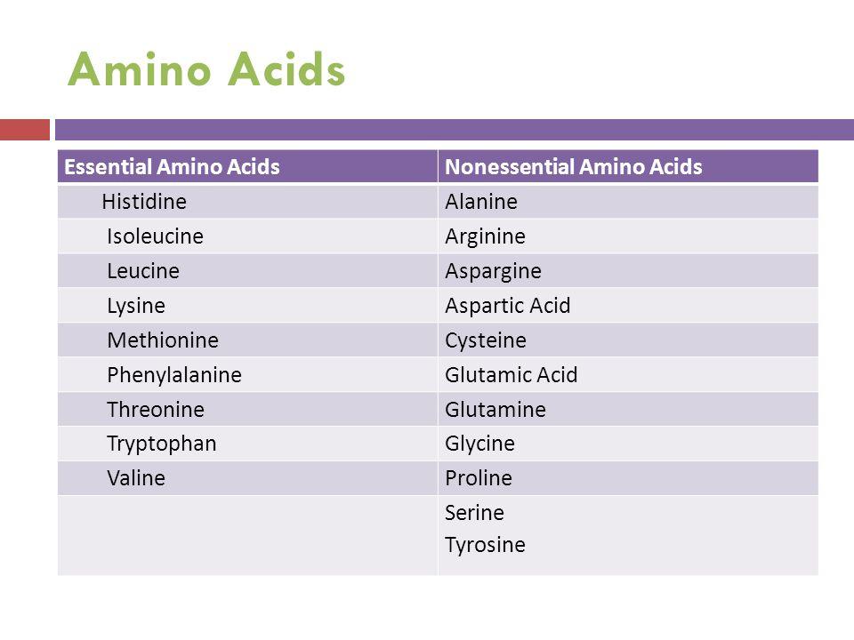 Amino Acids Essential Amino AcidsNonessential Amino Acids HistidineAlanine IsoleucineArginine LeucineAspargine LysineAspartic Acid MethionineCysteine