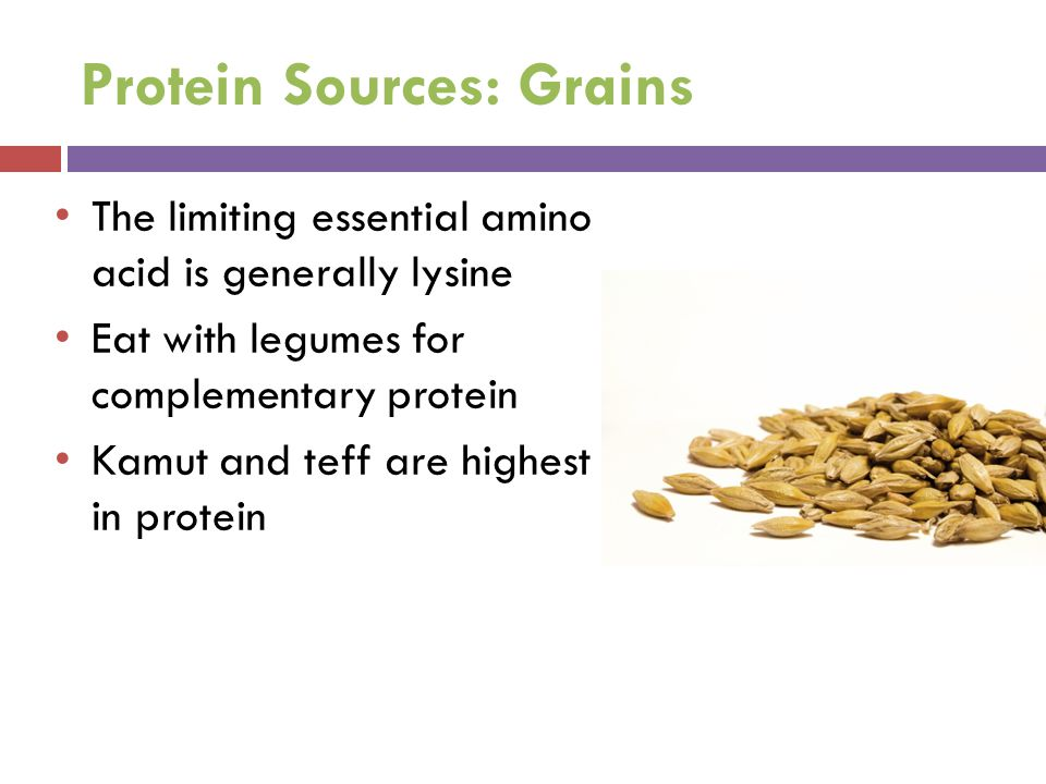 Protein Sources: Grains The limiting essential amino acid is generally lysine Eat with legumes for complementary protein Kamut and teff are highest in