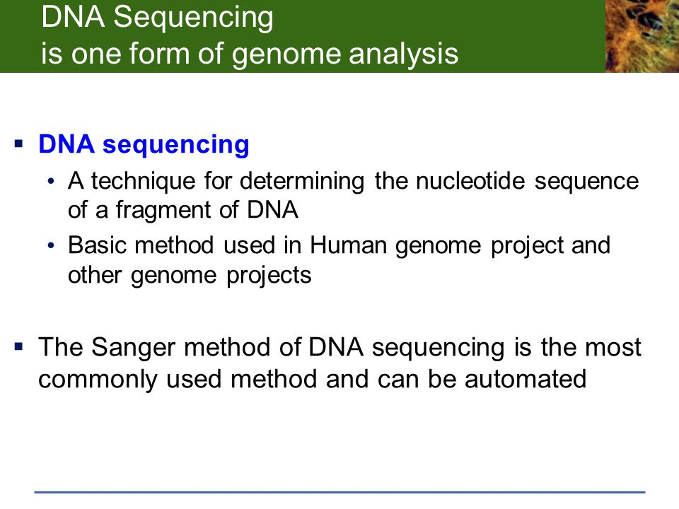 DNA Sequencing is one form of genome analysis  DNA sequencing A technique for determining the nucleotide sequence of a fragment of DNA Basic method u