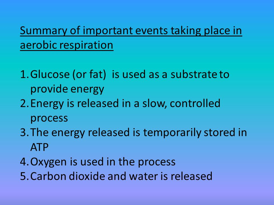 Anaerobic Respiration In anaerobic respiration the food is broken down without oxygen in animals to form lactic acid and ethanol in plants and yeast.