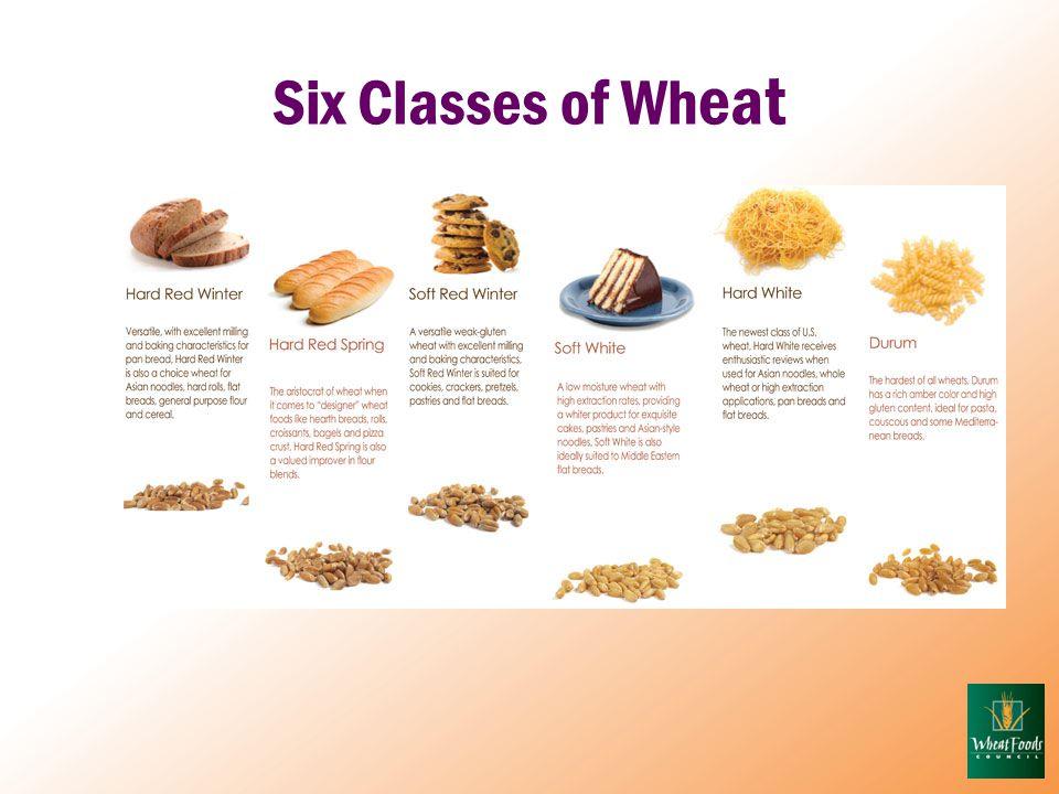 Six Classes of Wh eat