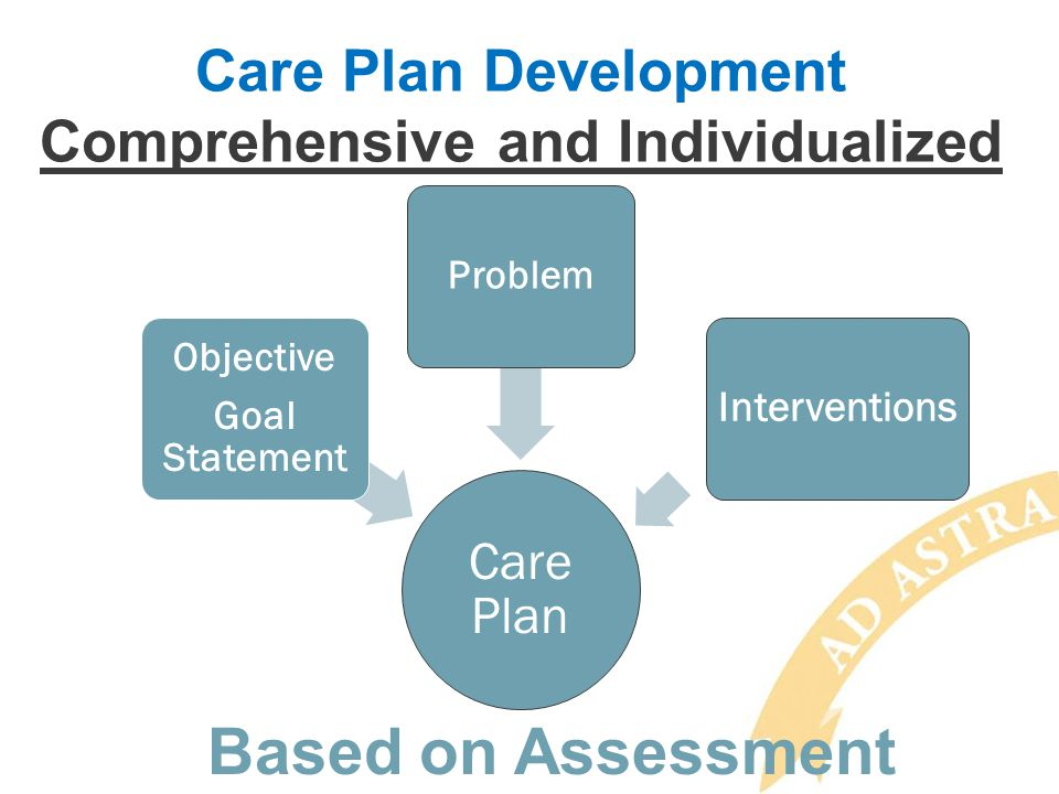 Care Plan Development Comprehensive and Individualized Care Plan Objective Goal Statement Problem Interventions Based on Assessment