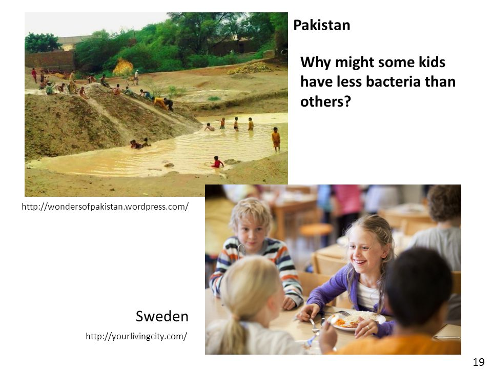 http://wondersofpakistan.wordpress.com/ Pakistan Sweden http://yourlivingcity.com/ 19 Why might some kids have less bacteria than others?