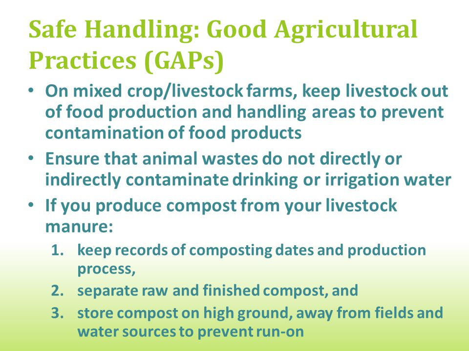 Safe Handling: Good Agricultural Practices (GAPs) On mixed crop/livestock farms, keep livestock out of food production and handling areas to prevent contamination of food products Ensure that animal wastes do not directly or indirectly contaminate drinking or irrigation water If you produce compost from your livestock manure: 1.keep records of composting dates and production process, 2.separate raw and finished compost, and 3.store compost on high ground, away from fields and water sources to prevent run-on