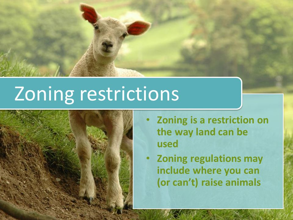 Zoning is a restriction on the way land can be used Zoning regulations may include where you can (or can't) raise animals Zoning restrictions