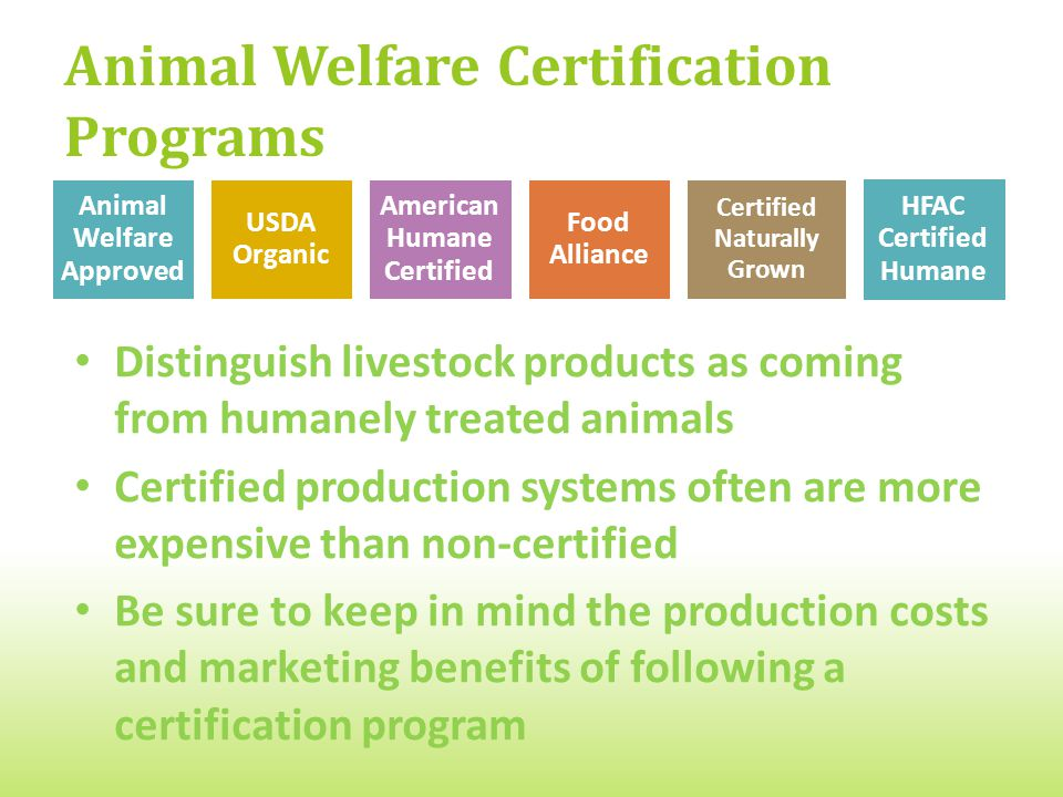 Animal Welfare Certification Programs Distinguish livestock products as coming from humanely treated animals Certified production systems often are more expensive than non-certified Be sure to keep in mind the production costs and marketing benefits of following a certification program Animal Welfare Approved USDA Organic American Humane Certified Food Alliance Certified Naturally Grown HFAC Certified Humane