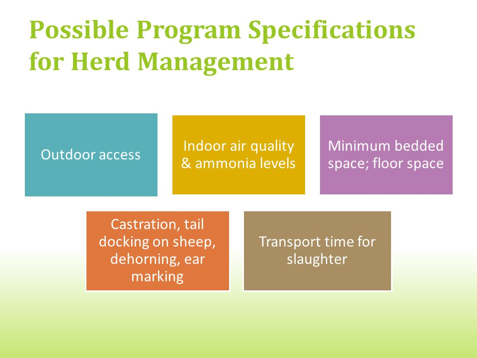 Possible Program Specifications for Herd Management Outdoor access Indoor air quality & ammonia levels Minimum bedded space; floor space Castration, tail docking on sheep, dehorning, ear marking Transport time for slaughter