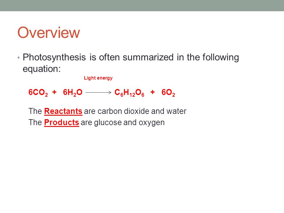 Overview Photosynthesis is often summarized in the following equation: 6CO 2 + 6H 2 O C 6 H 12 O 6 + 6O 2 The Reactants are carbon dioxide and water The Products are glucose and oxygen Light energy