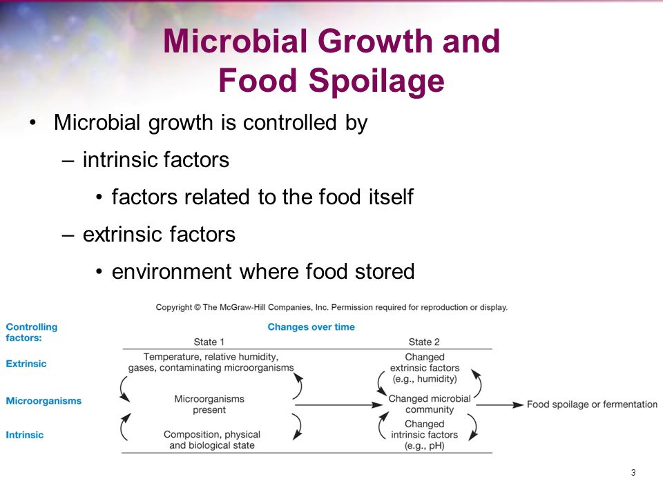 Microbial Growth and Food Spoilage Microbial growth is controlled by –intrinsic factors factors related to the food itself –extrinsic factors environm