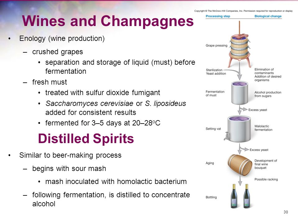 Wines and Champagnes Enology (wine production) –crushed grapes separation and storage of liquid (must) before fermentation –fresh must treated with su