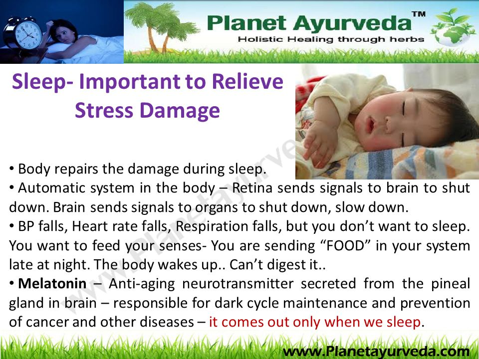 Sleep- Important to Relieve Stress Damage Body repairs the damage during sleep. Automatic system in the body – Retina sends signals to brain to shut d