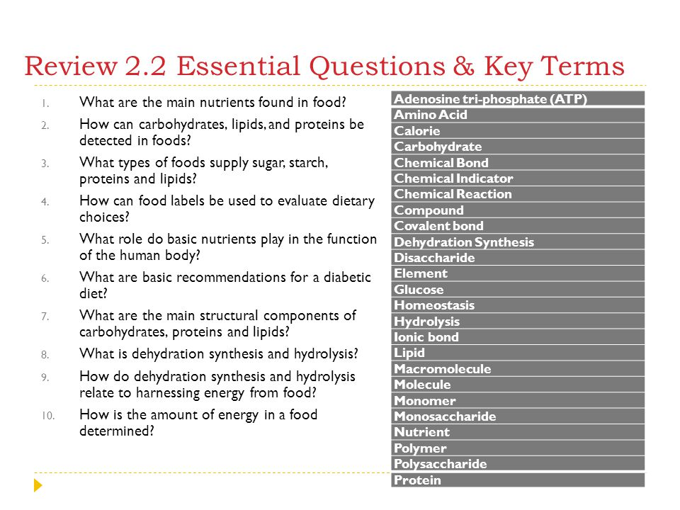 Review 2.2 Essential Questions & Key Terms 1. What are the main nutrients found in food? 2. How can carbohydrates, lipids, and proteins be detected in