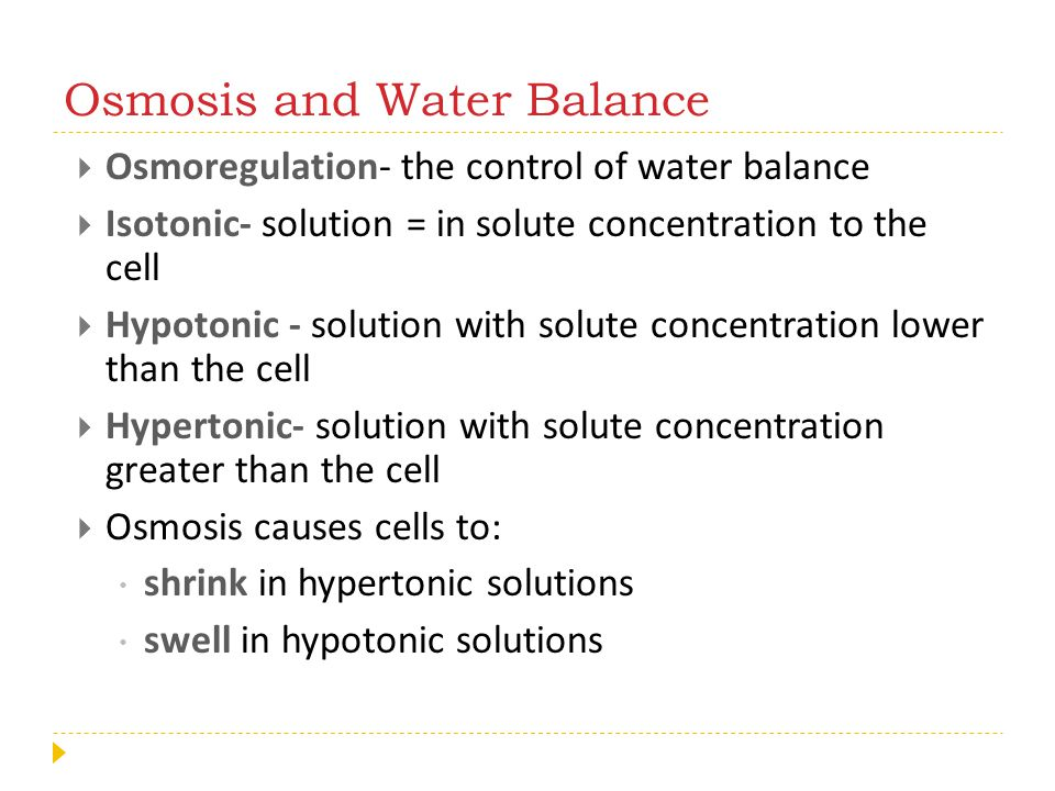 Osmosis and Water Balance  Osmoregulation- the control of water balance  Isotonic- solution = in solute concentration to the cell  Hypotonic - solu