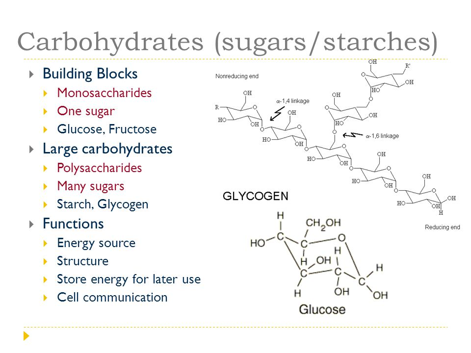 Carbohydrates (sugars/starches)  Building Blocks  Monosaccharides  One sugar  Glucose, Fructose  Large carbohydrates  Polysaccharides  Many sug