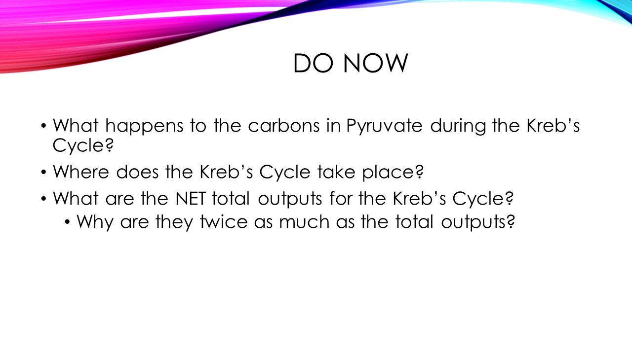 DO NOW What happens to the carbons in Pyruvate during the Kreb's Cycle? Where does the Kreb's Cycle take place? What are the NET total outputs for the