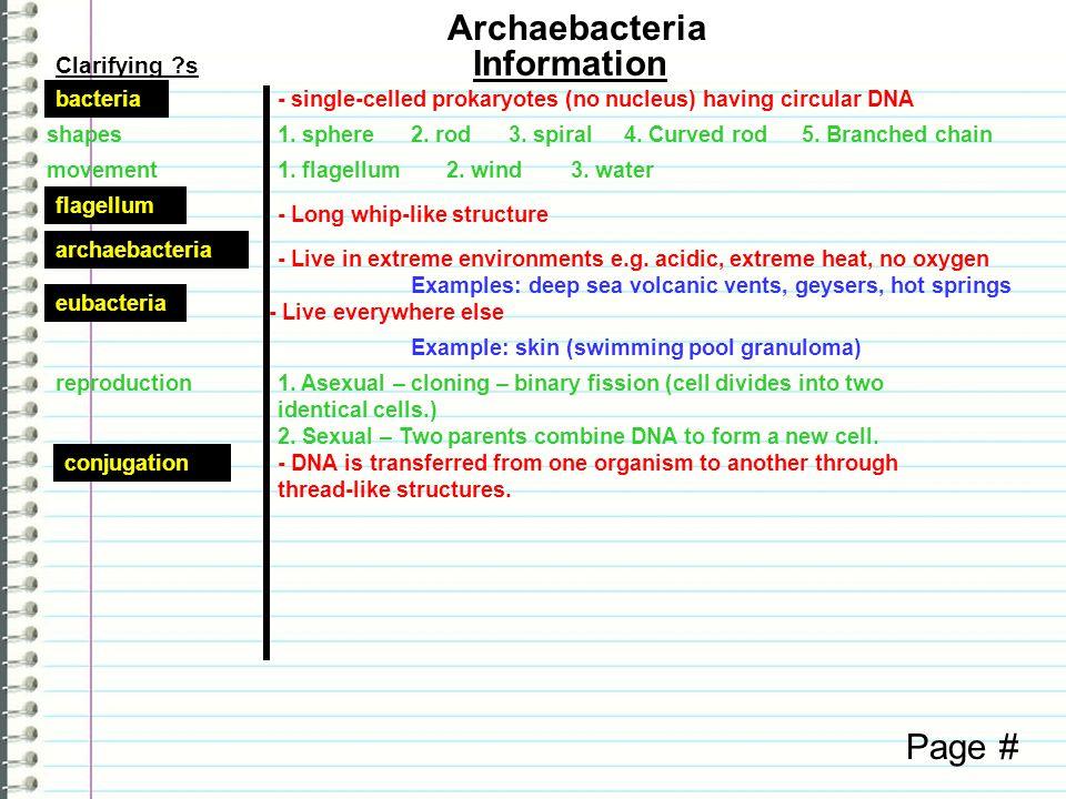 Clarifying ?s Information Page # Archaebacteria bacteria- single-celled prokaryotes (no nucleus) having circular DNA shapes1.