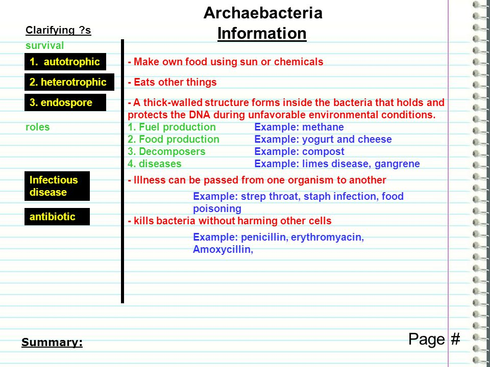 Clarifying ?s Information Archaebacteria Page # Summary: roles1.
