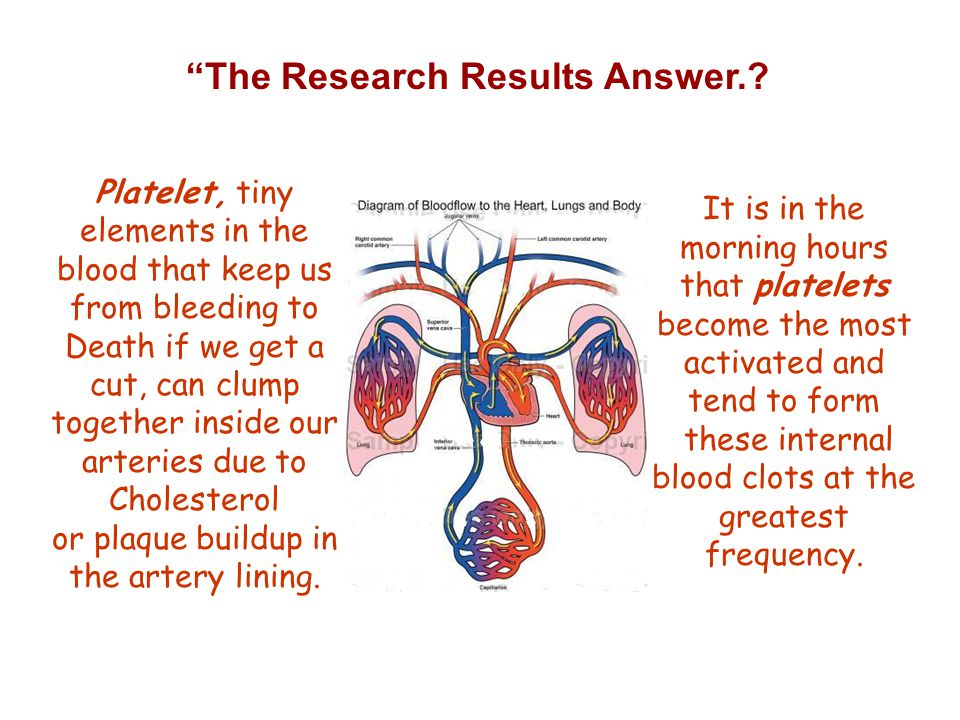The Research Results Answer..