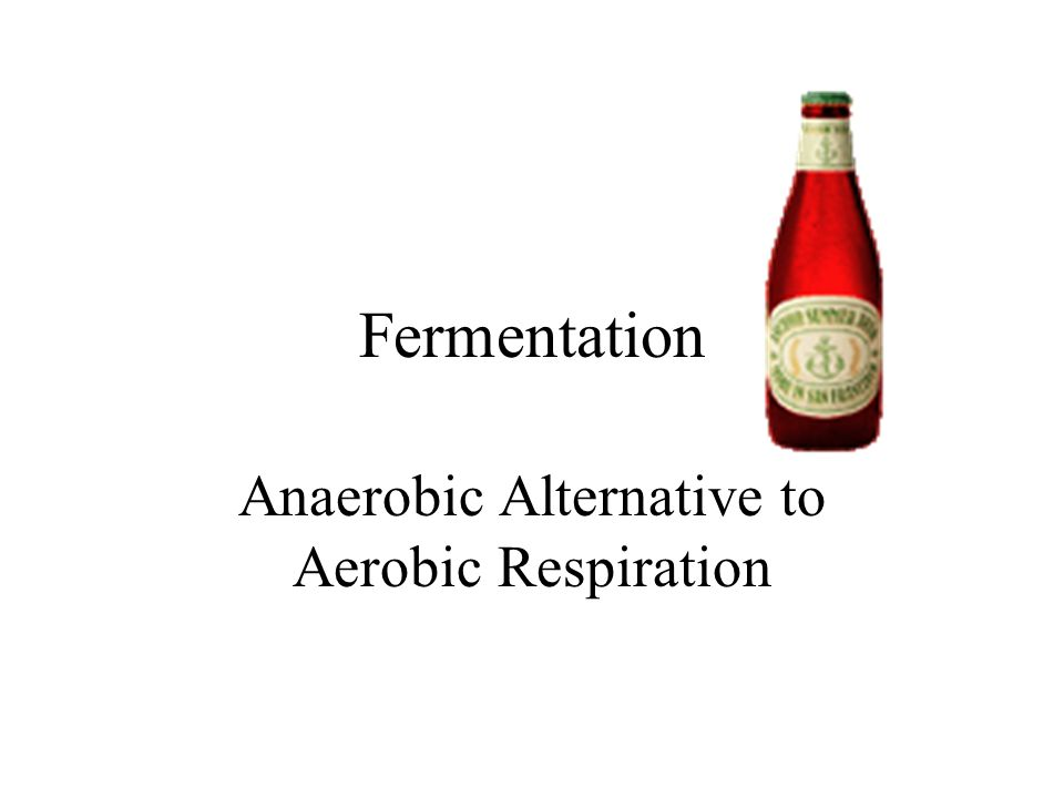 Fermentation Anaerobic Alternative to Aerobic Respiration