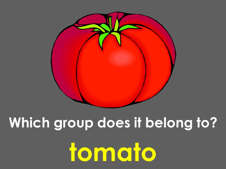 tomato Which group does it belong to