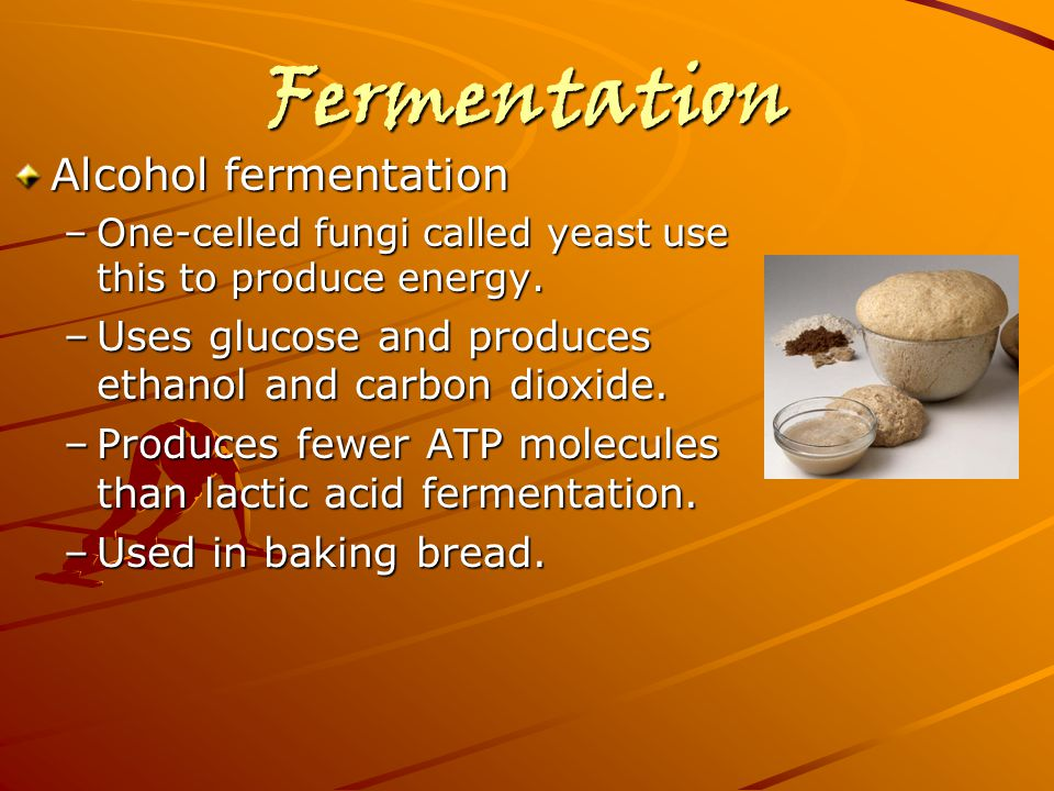 Fermentation Alcohol fermentation –One-celled fungi called yeast use this to produce energy. –Uses glucose and produces ethanol and carbon dioxide. –P