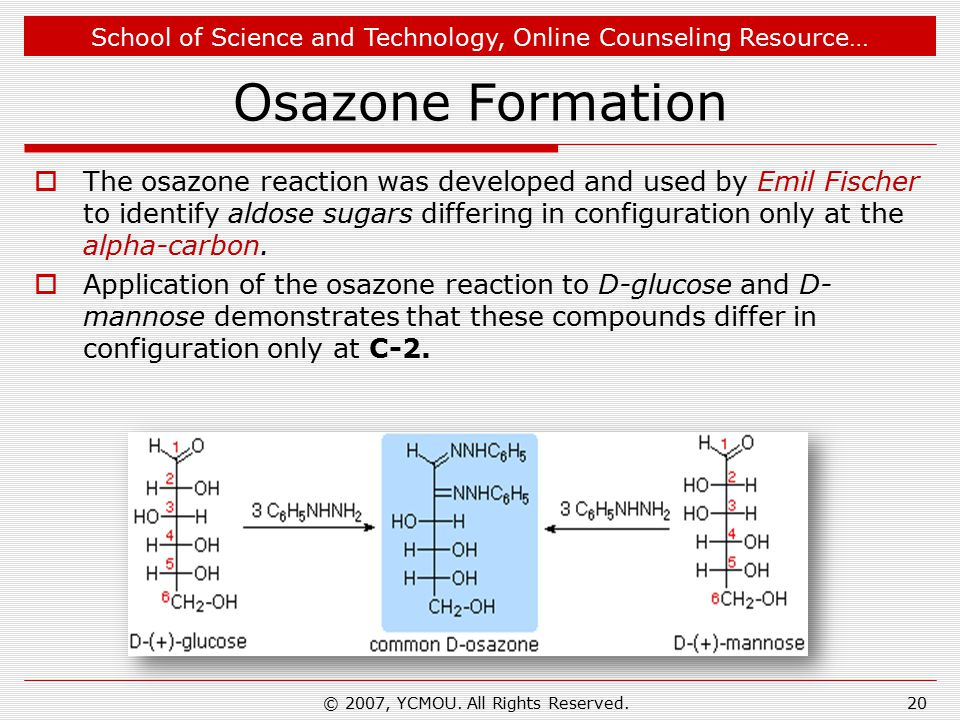 School of Science and Technology, Online Counseling Resource… Osazone Formation  The osazone reaction was developed and used by Emil Fischer to identify aldose sugars differing in configuration only at the alpha-carbon.