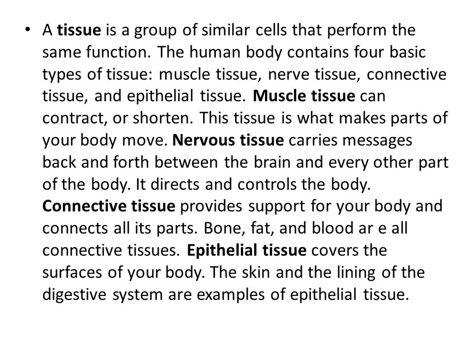 An organ is a structure that is composed of different kinds of tissue.