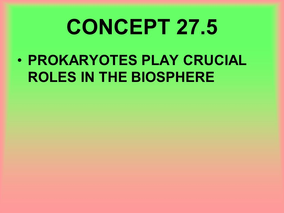 CONCEPT 27.5 PROKARYOTES PLAY CRUCIAL ROLES IN THE BIOSPHERE