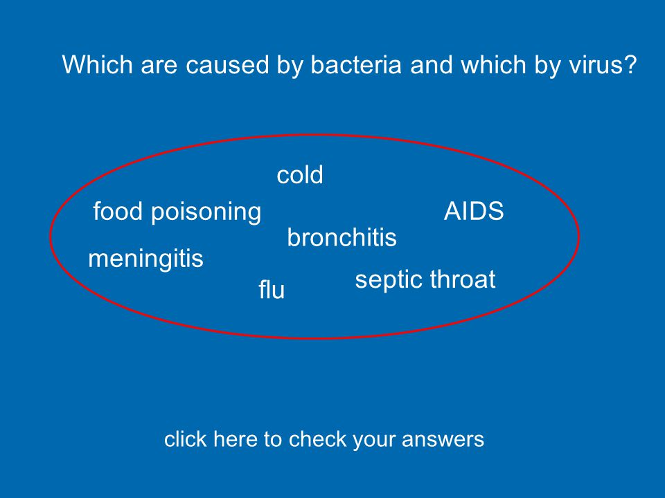 BACTERIALVIRAL food poisoningcold septic throatflu bronchitisAIDS meningitis can be caused by either