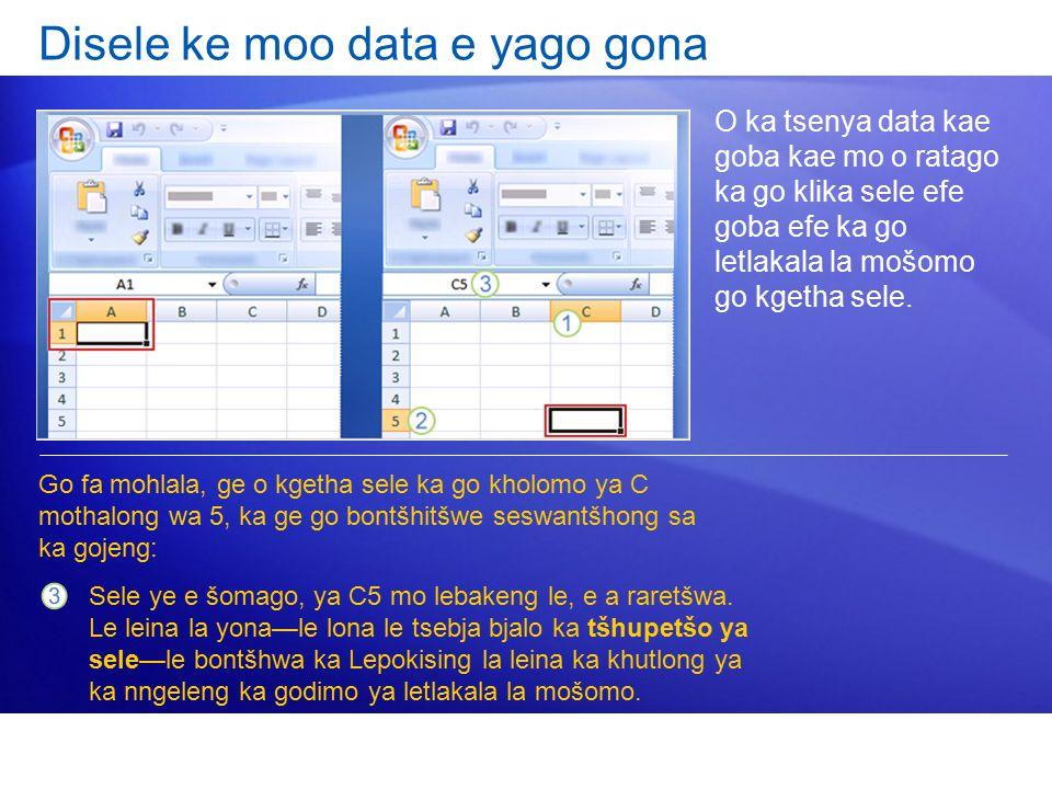 Disele ke moo data e yago gona O ka tsenya data kae goba kae mo o ratago ka go klika sele efe goba efe ka go letlakala la mošomo go kgetha sele.