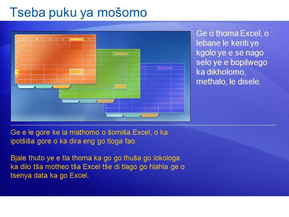 Ge o thoma Excel, o lebane le keriti ye kgolo ye e se nago selo ye e bopilwego ka dikholomo, methalo, le disele.