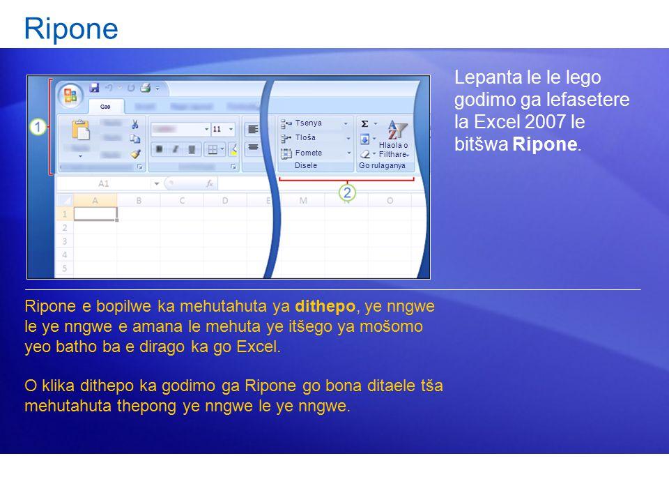Ripone Lepanta le le lego godimo ga lefasetere la Excel 2007 le bitšwa Ripone.