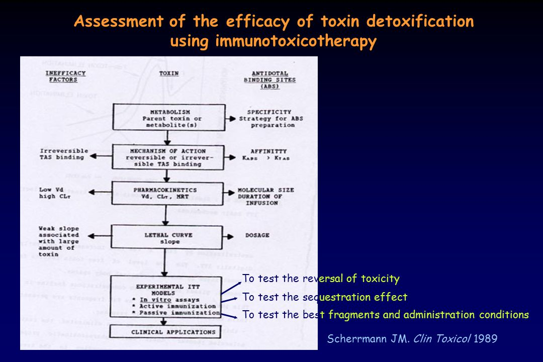 Assessment of the efficacy of toxin detoxification using immunotoxicotherapy Scherrmann JM. Clin Toxicol 1989 To test the reversal of toxicity To test