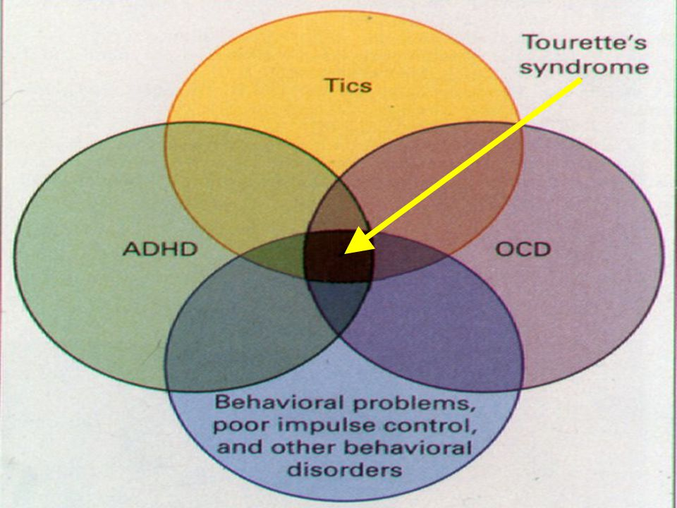 Assessment: co-morbid conditions ADHD Obsessions/Compulsions Learning interferences Behavioral disorders Developmental disorders Mood disorders Anxiety Social difficulties (including PDDs)