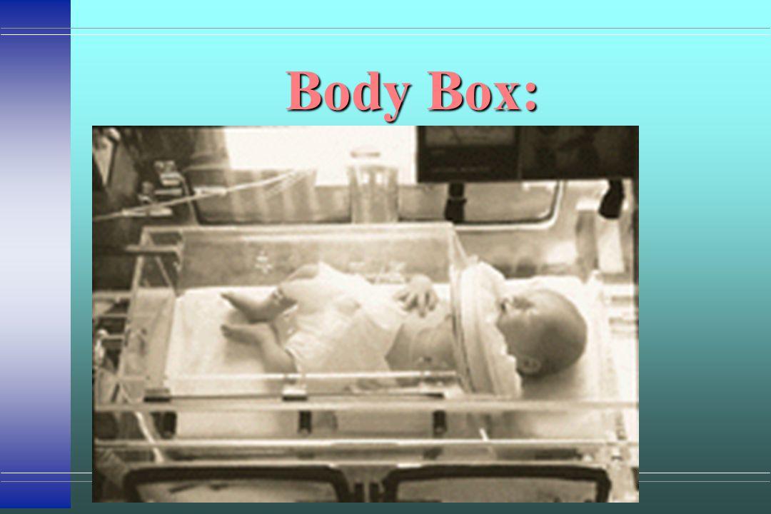 Body Box: