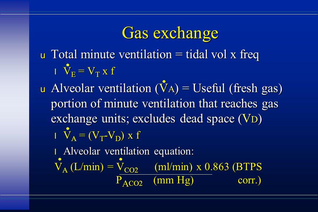Gas exchange u Total minute ventilation = tidal vol x freq l V E = V T x f u Alveolar ventilation (V A ) = Useful (fresh gas) portion of minute ventil