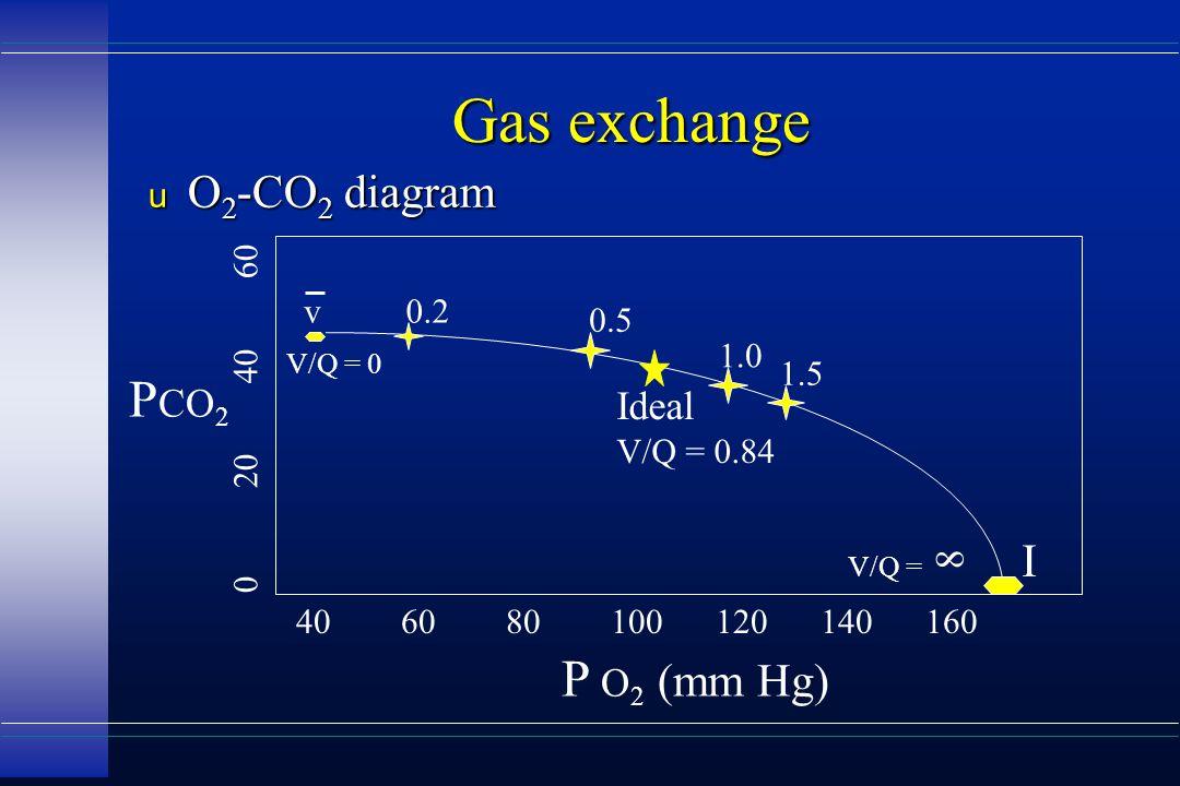 Gas exchange u O 2 -CO 2 diagram 406080100120140160 0204060 P CO 2 P O 2 (mm Hg) V/Q = 8 I V/Q = 0 0.2 1.0 1.5 0.5 Ideal V/Q = 0.84 v