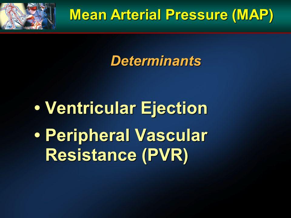 Mean Arterial Pressure (MAP) Determinants Ventricular Ejection Ventricular Ejection Peripheral Vascular Resistance (PVR) Peripheral Vascular Resistance (PVR)