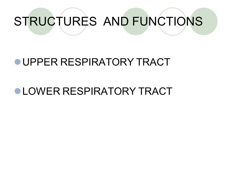 STRUCTURES AND FUNCTIONS UPPER RESPIRATORY TRACT LOWER RESPIRATORY TRACT